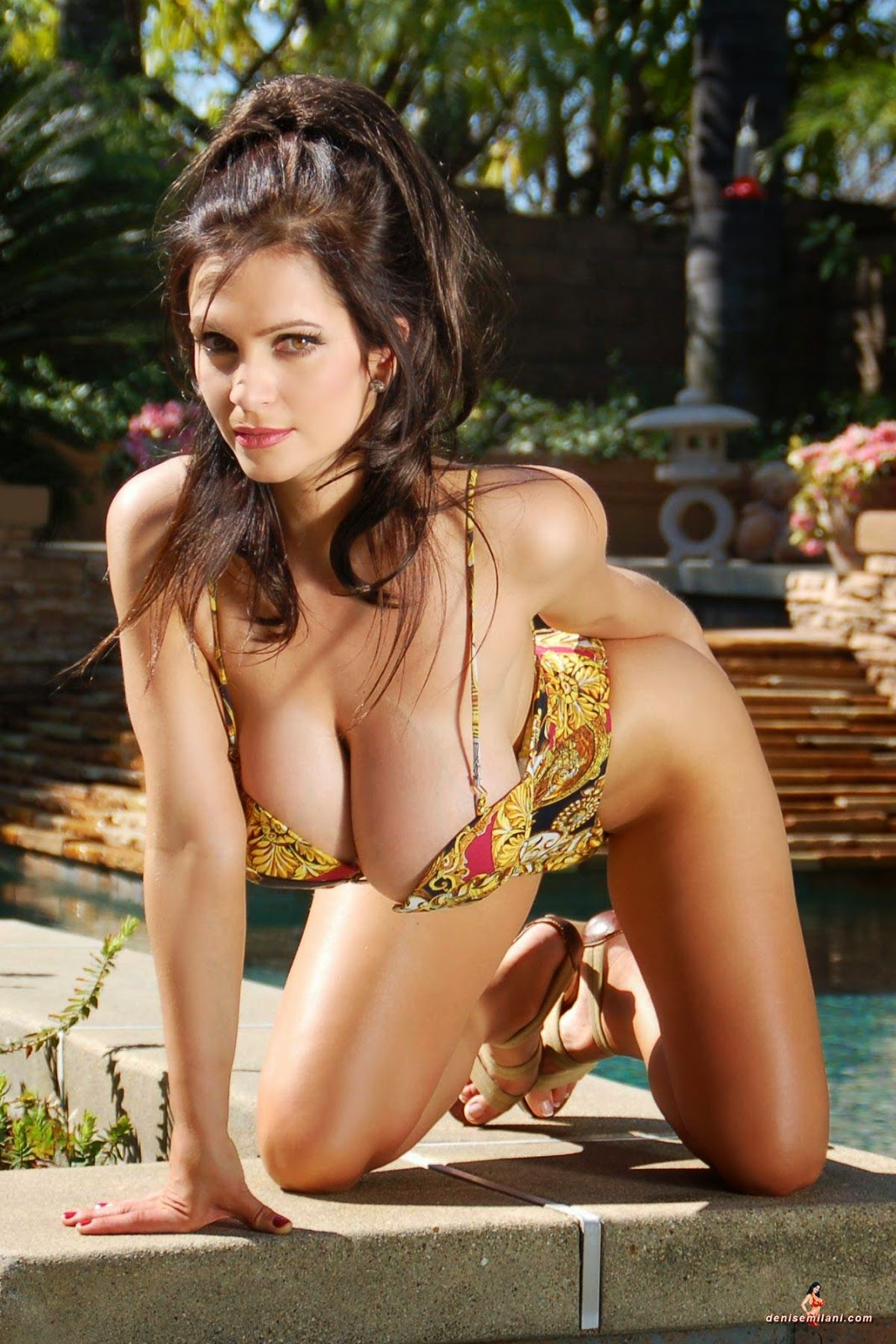 Set Baño Denise Milani Archives: Swimming Pool Set 2: Hot In